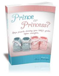 Image result for Prince or Princess Book